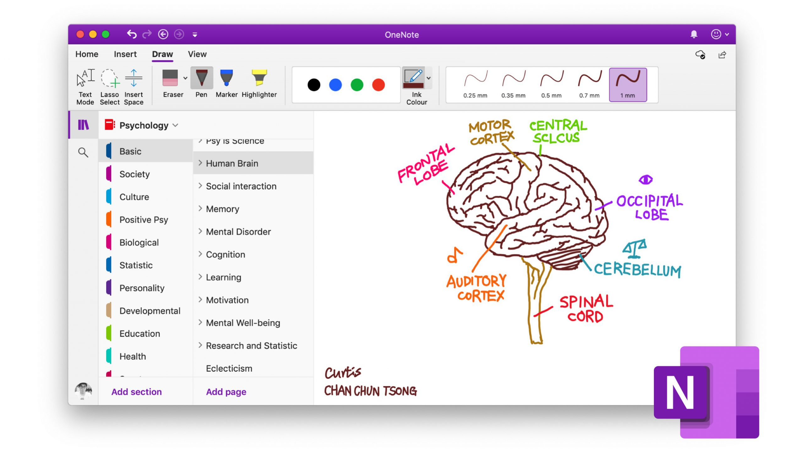 Productivity-with-OneNote